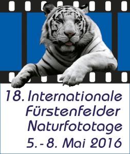 18_IFN-Logo