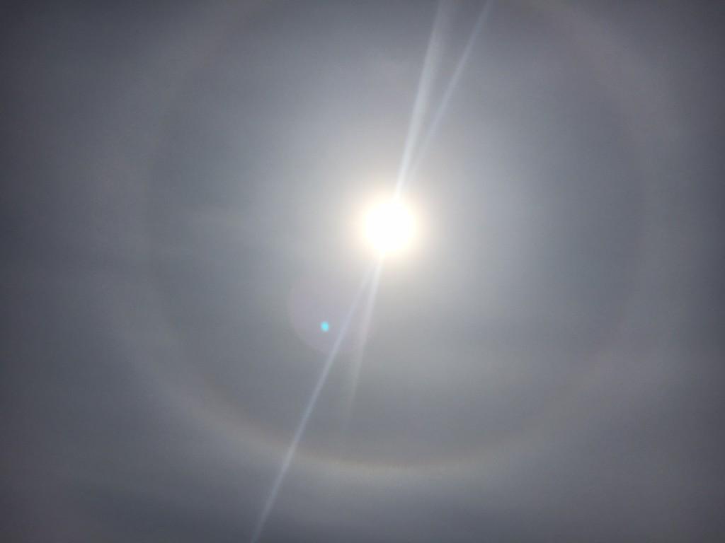 Über die Sonne zogen dünne Wolken. Dafür zeigte sich dieses schöne Sonnenhalo.