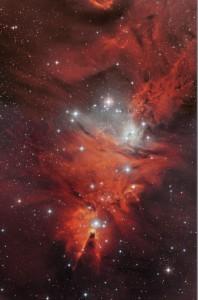 NGC 2264 und der Konusnebel