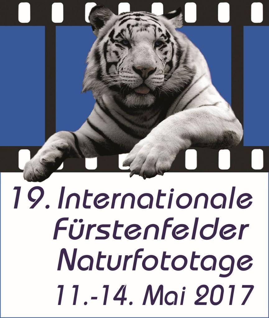 Logo-IFN-groß-2017